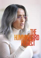 Search netflix The Hummingbird Project